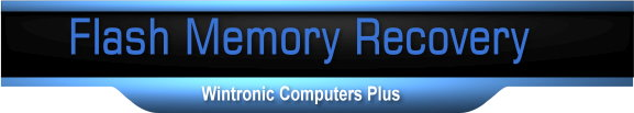 Flash Memory Recovery